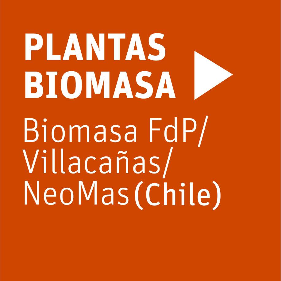 plantas-neoelectra-biomasa