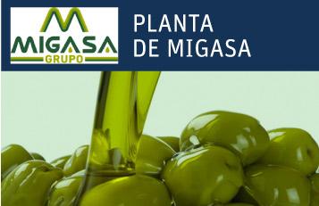 planta-migasa-neogeneracion neoelectra