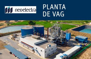 planta-vag-neogeneracion neoelectra