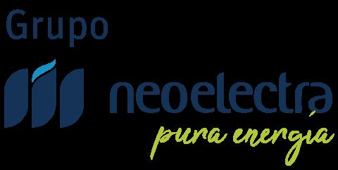 Neoelectra - Politica del Grupo